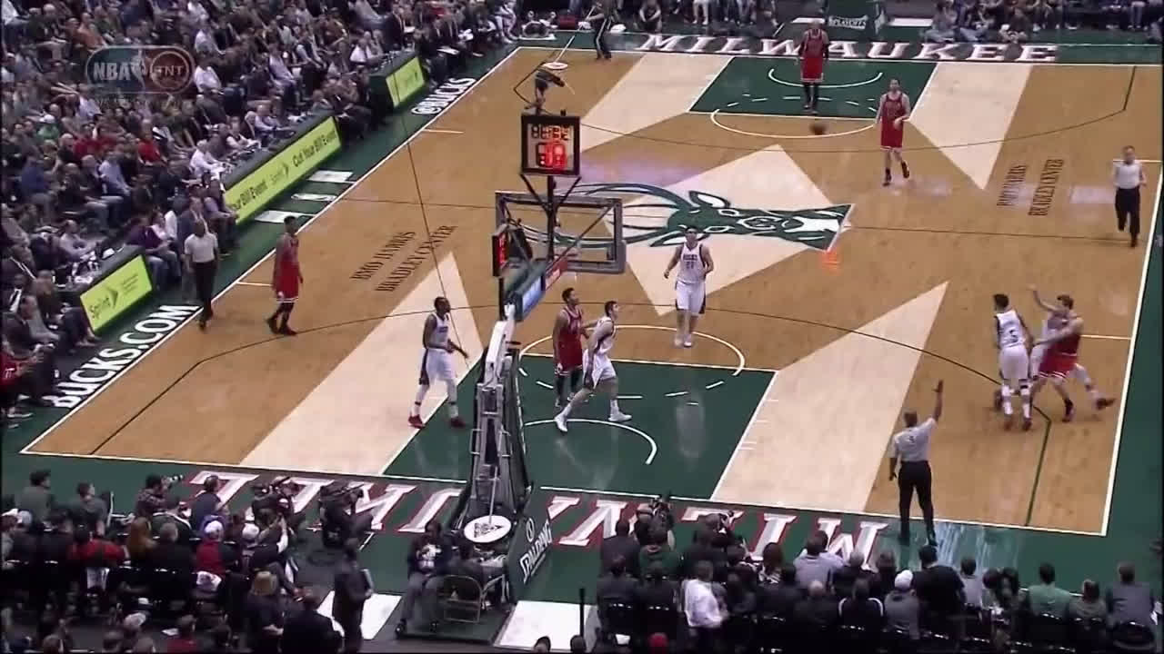 Giannis sends Mike Dunleavy flying into the crowd!