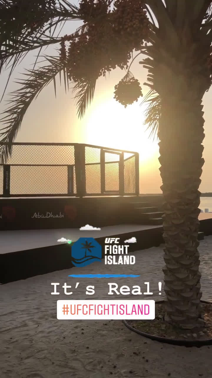 A look at the Fight Island Octagon (courtesy of u/fightographer)